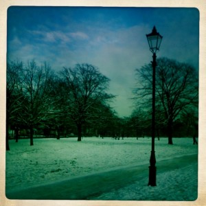 This is what I saw today when I walked outside my door in London - the Common.